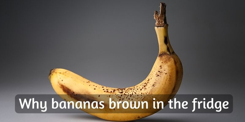 Read more about the article Why Do Bananas Turn Brown In The Fridge ?