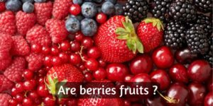 Are Berries Fruits ? – Here's The Truth (With Explanatory Pictures)