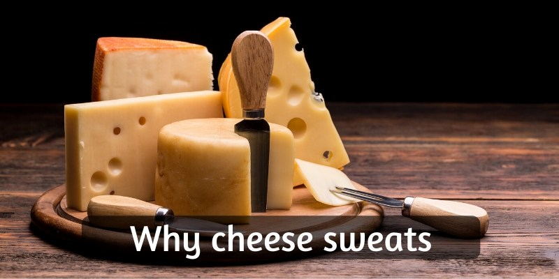 Read more about the article Why Does Cheese Sweat ? – Here's What's Really Happening, And What To Do