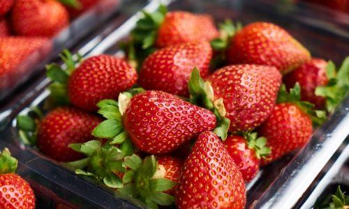 frozen strawberry (3)