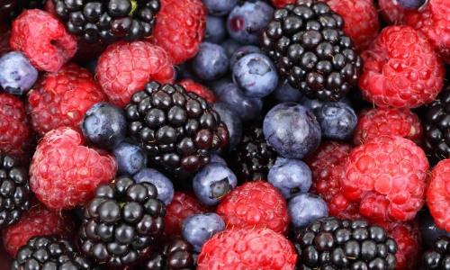 fruits berries (3)