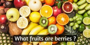 Read more about the article What Fruits Are Berries ? This List Is Not What You May Think
