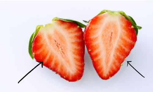 strawberry fruit veggie (2)
