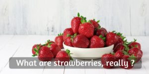 Is Strawberry A Vegetable Or Fruit ? – The Truth About Your Favorite Berry