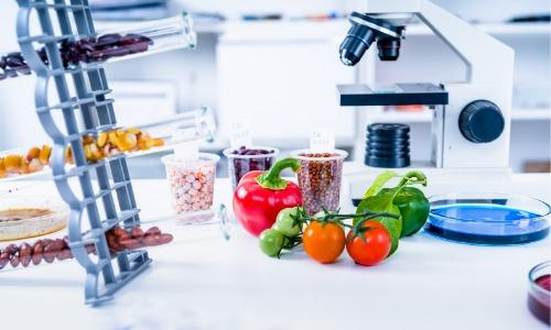 man made fruit veg (4)