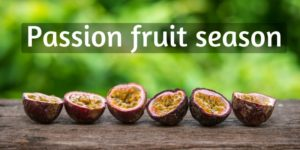 Read more about the article A Nifty Guide To Passion Fruit Season, And Common Mistakes To Avoid
