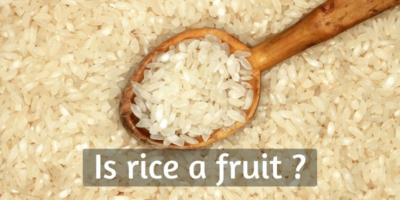 Is Rice A Fruit Even ? It's Totally Okay To Be Confused, And Here's Why
