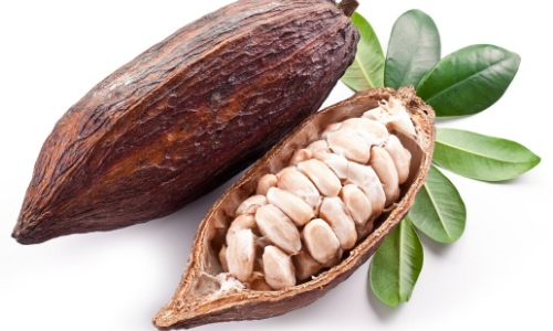 cocoa butter powder (1)