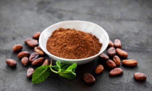cocoa butter powder (3)