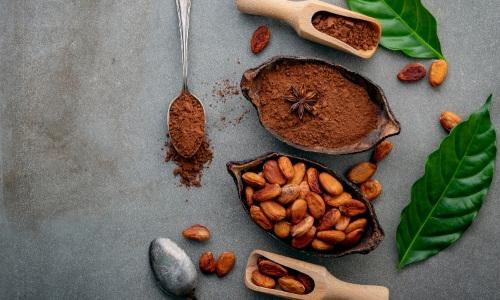 cocoa butter powder (5)