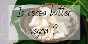 Real Talk: Is Cocoa Butter Truly Vegan ? Here's What We Found Out