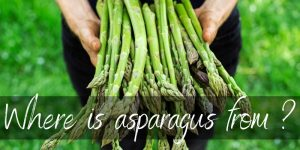 Read more about the article Here's Where Asparagus Comes From (It's Not What You Think)