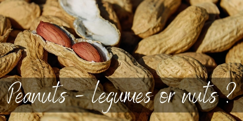 Read more about the article Are Peanuts Legumes Or Nuts ? Here's The Truth