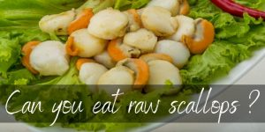 Read more about the article Can You Eat Raw Scallops ? Here's What All The Fuss Is About
