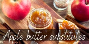 Read more about the article Best Apple Butter Substitutes