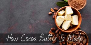 Read more about the article Here's How Cocoa Butter Is Made, Step By Step