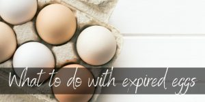 What To Do With Expired Eggs – Here's Some Ideas
