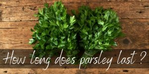 Read more about the article How Long Does Parsley Last ? Here's What You Need To Know