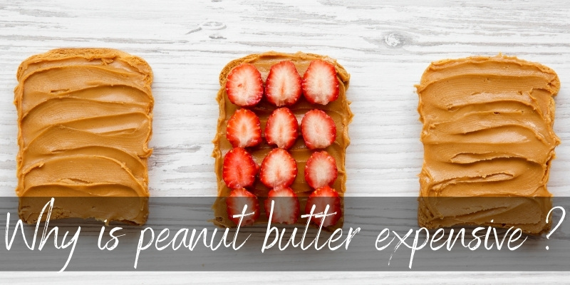 Read more about the article 4 Reasons Peanut Butter Is Expensive
