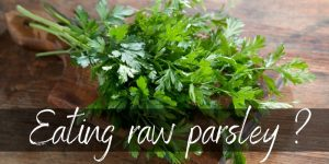 Read more about the article Can You Eat Raw Parsley ? Here's What We Found