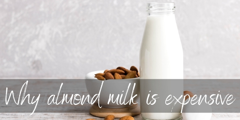 Why Is Almond Milk So Expensive ? Here's The Top Reasons