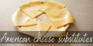 American Cheese Substitutes – 7 Ideas To Try Right Now