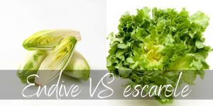 Endive VS Escarole – Differences And Similarities