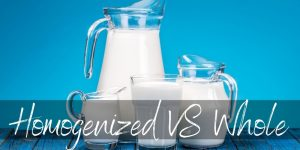 Homogenized VS Whole Milk: What's The Difference?