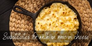 Read more about the article Mac N Cheese Substitutes – How To Make It Without Milk
