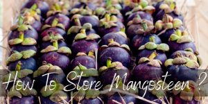 How To Store Mangosteen So It Lasts Longer