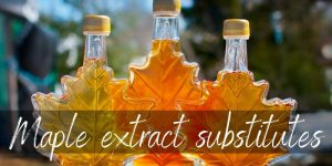 Read more about the article Best Substitutes For Maple Extract – Here's 8 Ideas To try