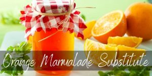 Best Orange Marmalade Substitute – 5 Ideas To Try Out