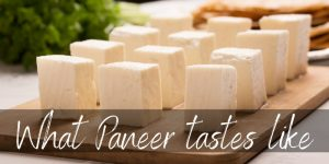 Read more about the article What Does Paneer Cheese Taste Like ? Here's What To Know
