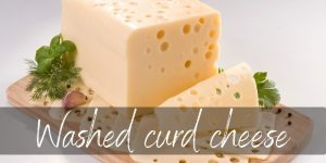 Read more about the article Washed Curd Cheese – What It Is, And Famous Examples