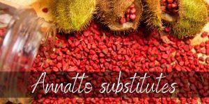Annatto Powder Substitute: Best Alternatives for The Unique Spice