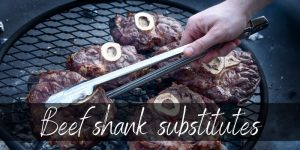 Read more about the article Best Beef Shank Substitutes – 5 Ideas To Try Next