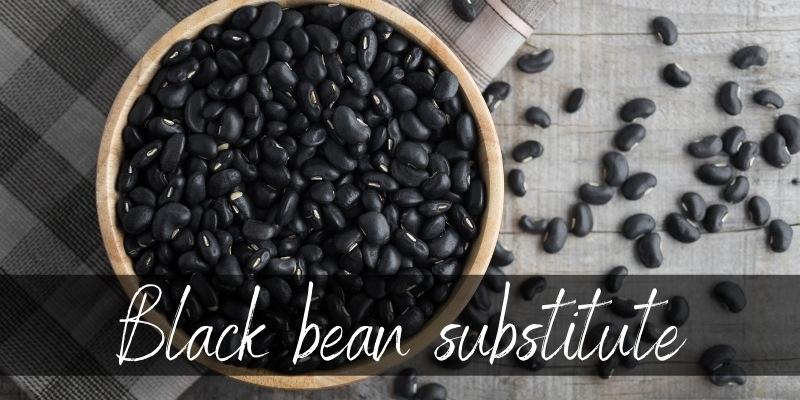 black bean substitute