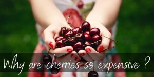 Why Are Cherries So Expensive ? Here's What We Know