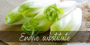 Read more about the article Endive Substitute – Here's 6 Ideas For Your Next Salad