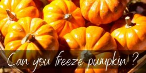 Read more about the article Can You Freeze Pumpkin? Yes, and Here's How!