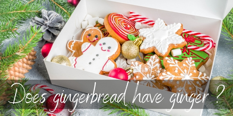 Read more about the article Is Gingerbread Made With Ginger ? Yes, It's Traditional