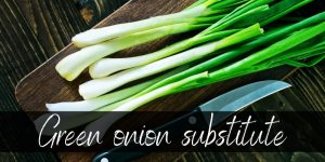 Read more about the article Best Green Onion Substitute – 5 Ideas To Try In A Pinch