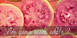 Read more about the article Are Guava Seeds Edible ? Here's What We Know