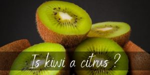 Is Kiwi A Citrus Fruit ? No, And Here's Why