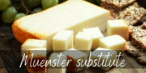 Read more about the article Muenster Cheese Substitutes – 7 Awesome Ideas To Try