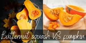 Pumpkin VS Butternut Squash – How To Pick Each
