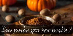 Does Pumpkin Spice Have Pumpkin ? Here's What We Found Out