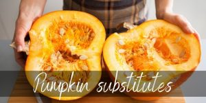 Can You Substitute Pumpkin? Absolutely, and Here's How!