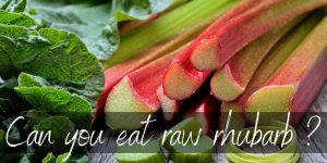 Can You Eat Rhubarb Raw ? Yes, And Here's How