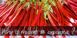 Read more about the article Why Is Rhubarb So Expensive ? Here's What To Know